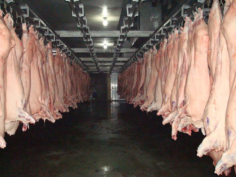 Les scandales alimentaires en Chine, une aubaine pour les importateurs