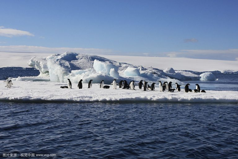 Cap sur l'Antarctique : une destination luxueuse en Chine