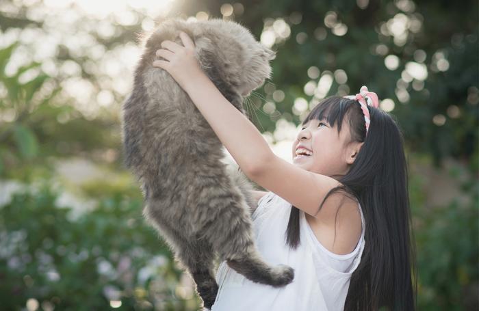 Chine : les ventes en ligne représentent plus de la moitié (51.8%) du marché des aliments pour animaux de compagnie